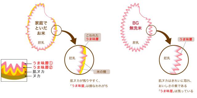 BGの無洗米なら肌ヌカがキレイに取り除かれるので、お米のおいしさがひきたつのです。